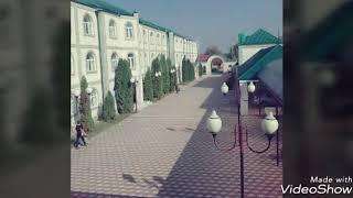 Курчалоевский исламский институт им.Ахмат Хаджи Кадыров.