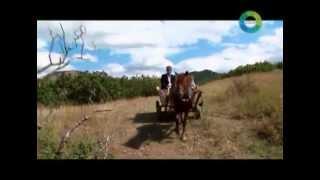 Тюрки России: Дагестан