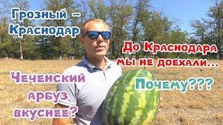 Грозный - Краснодар. Терские казаки. Чеченский арбуз. Август 2019