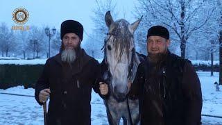 РАМЗАН КАДЫРОВ Поздравляем нашего дорогого Брата Салаха-Хаджи Межиева с Днём Рождения!