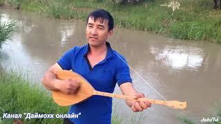 Ногайские песни. Амирхан из Сары-Су. Чеченская Республика. Чечнядагы ногайлардын заныраган йырлары.