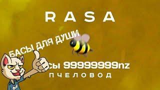 Песня пчеловод nz999999999999 #бассы #трейнд #лето #осень #пчеловод #rasa #клип #Ютуб #втрейнд