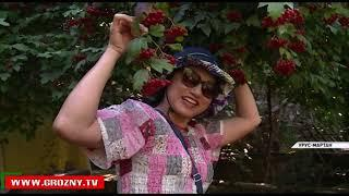 Чеченская Республика в центре внимания туристов
