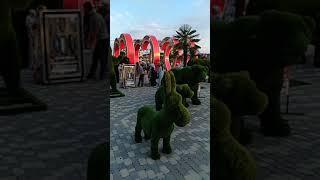 Чеченская Республика город Грозный. Обычный день в цветочном парке