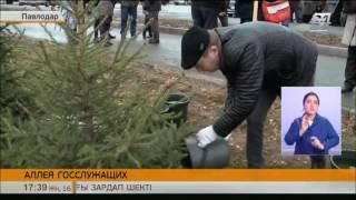 Аллея госслужащих появилась в Павлодаре