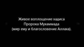 Старший Кадыров о лицемере младшего кадырова и кадыровых!